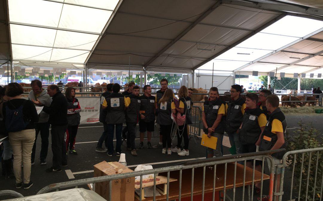 MFR-CFA Chemillé : Les élèves de CAPa 2 au Festi'élevage !
