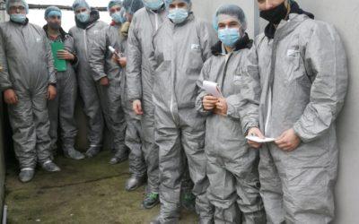 MFR-CFA Chemillé : visite d'une exploitation porcine !